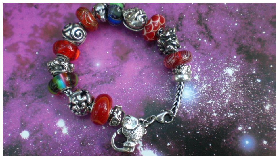 Memory Bracelet Regenb12